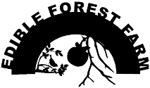 Half circle logo. Edible forest farm.